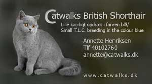 Catwalk British